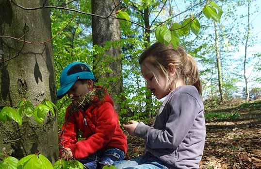 Kinder in Wald mit blätter