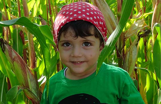 Kind in Meisfeld